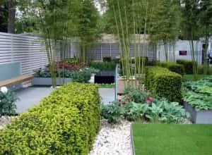 57 300x220 - Tư vấn thiết kế sân vườn tiểu cảnh hòn non bộ đẳng cấp