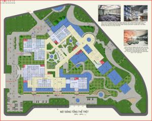 thiết kế trường đại học 1