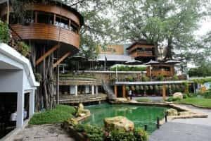 thiet ke quan cafe san vuon dep 2 300x200 - Thiết kế quán cafe sân vườn