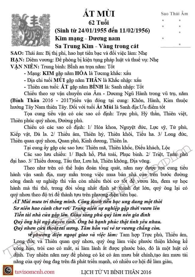 tu-vi-2016-at-mui-nam-mang-1