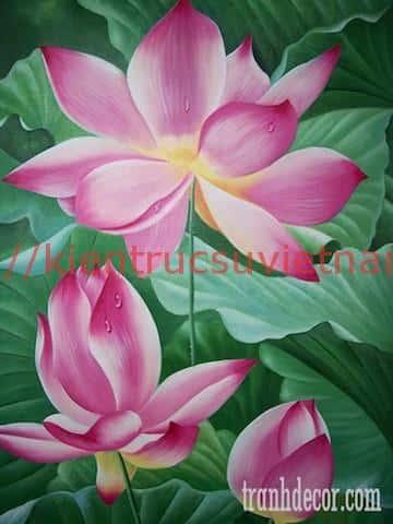 tranh hoa sen 5 - Những bức tranh vẽ hoa sen đẹp nhất