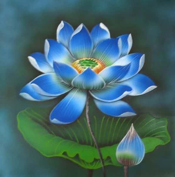 tranh ve hoa sen 1 - Những bức tranh vẽ hoa sen đẹp nhất