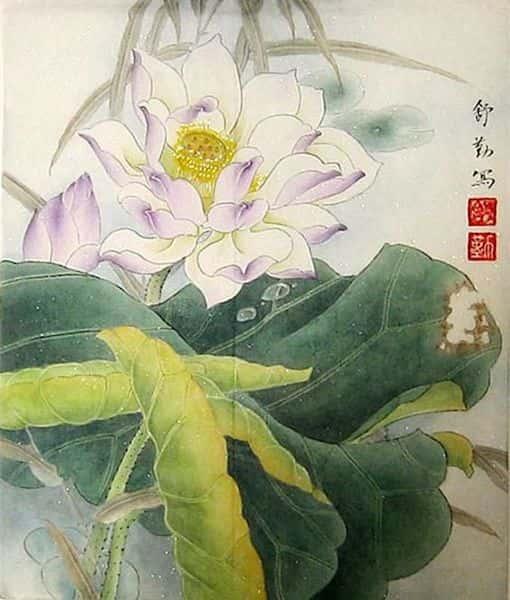 tranh ve hoa sen 3 - Những bức tranh vẽ hoa sen đẹp nhất