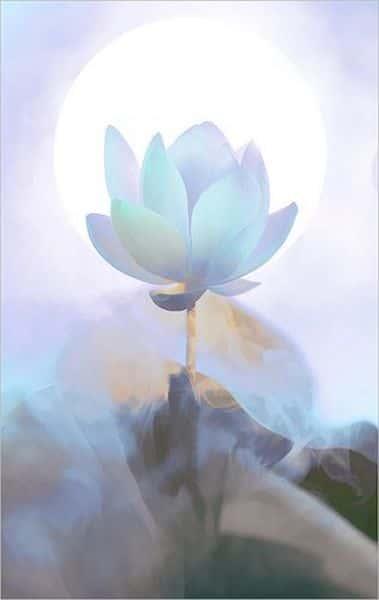 tranh ve hoa sen 5 - Những bức tranh vẽ hoa sen đẹp nhất