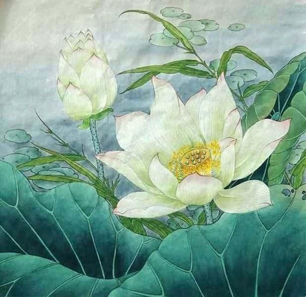 tranh ve hoa sen 8 - Những bức tranh vẽ hoa sen đẹp nhất