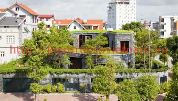 Thiết kế nhà với nhiều không gian xanh và hiện đại