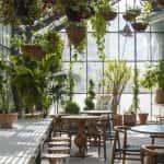 thiet ke quan cafe 24 150x150 - Khởi nghiệp (starup) kinh doanh quán cafe thành công