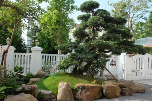 vuonnhat120m2trongbietthuhanoi - Thiết kế nhà vườn đẹp