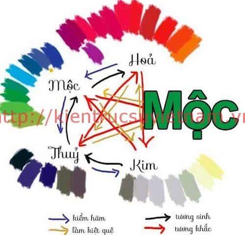 menh moc - Người mệnh mộc hợp màu gì, khắc màu gì ?