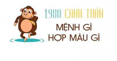 tuoi canh than hop mau gi 400x209 - Tìm hiểu người sinh năm 1980 tuổi canh thân hợp hướng nào ?