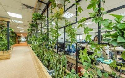 thiet ke noi that van phong 400x249 - Thiết kế nội thất văn phòng đẹp
