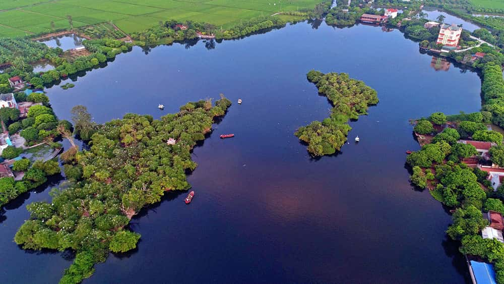 Khu du lịch sinh thái đảo cò Chi Lăng Nam, Thanh Miện, Hải Dương