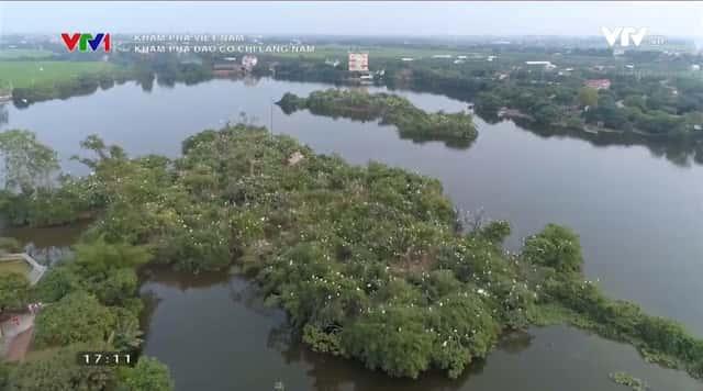 dao co hai duong - Khu du lịch sinh thái đảo cò Chi Lăng Nam, Thanh Miện, Hải Dương