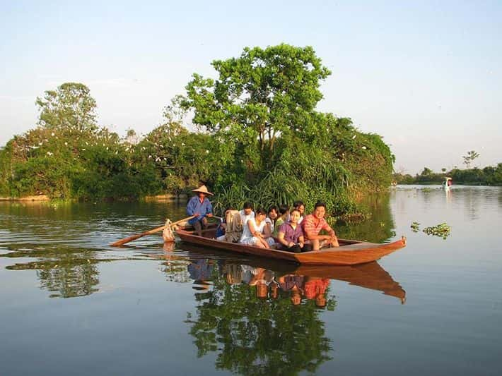dao co - Khu du lịch sinh thái đảo cò Chi Lăng Nam, Thanh Miện, Hải Dương