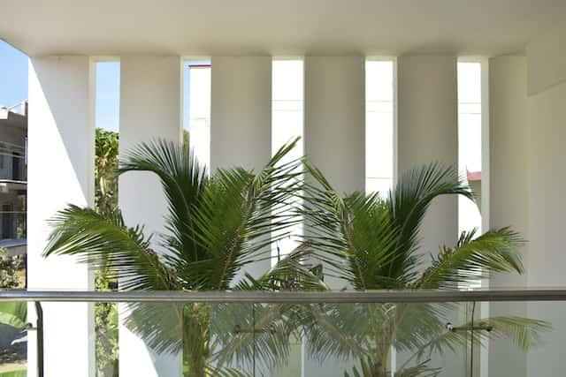biet thu hien dai cay xanh - Công trình biệt thự 2 tầng hiện đại đẹp