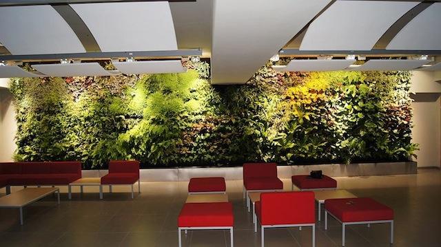 thiết kế tường cây xanh5 - Thiết kế tường cây xanh