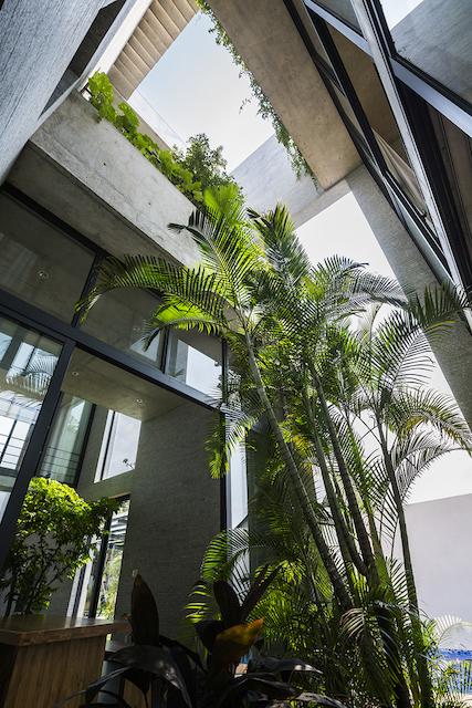 thiet ke biet thu dep pic09 Semi outdoor gardenr OKI - Binh House / VTN Architects: Ngôi nhà cây xanh cho các đô thị phát triển