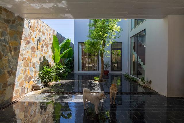 thiet ke nha dep HGAA 09 - Stepping Green House / HGAA: không gian sống đô thị gần gũi với thiên nhiên