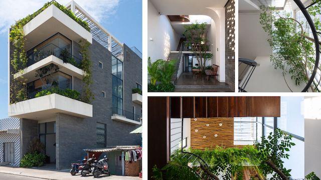 thiet ke nha dep vung tau - Ngôi nhà tạo ra năng lượng sống nhẹ nhàng khiến chủ nhà hoàn toàn hướng về thiên nhiên