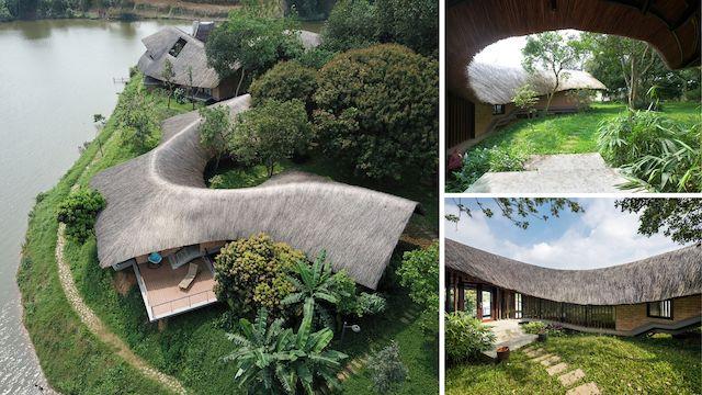 mau nha dep mothers house - Mother's House: Ngôi nhà là sự cộng sinh hữu cơ với thiên nhiên