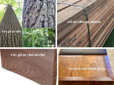 mau go oc cho 400x300 - Tìm hiểu màu gỗ óc chó tự nhiên đẹp cho nội thất gia đình