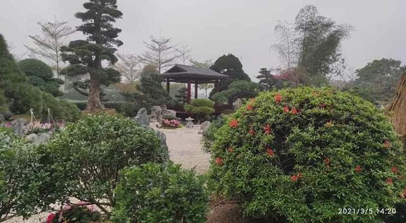 thiet ke thi cong san vuon z2481521664374 40c6efb1b694e49cbb82162da0fea482 - Thiết kế nhà kiểu Nhật đẹp