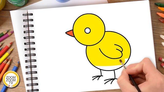 cach ve con ga con don gian - Hướng dẫn cách vẽ con gà đơn giản với 8 bước cơ bản